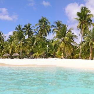 Saona Island, Bayahibe