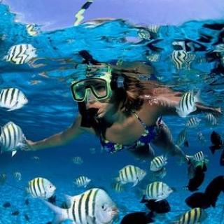 Las Terrenas – Things To Do – Scuba & Snorkel