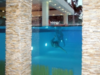 Villa Sofia – Villa Sofia is Different – Pool Suite